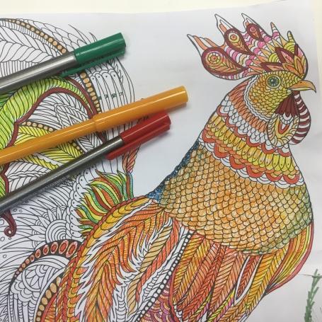 colouring pix